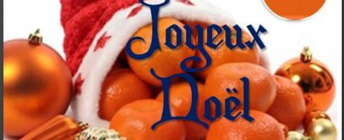 LA CFDT BLUELINK SA vous souhaites un très joyeux Noël